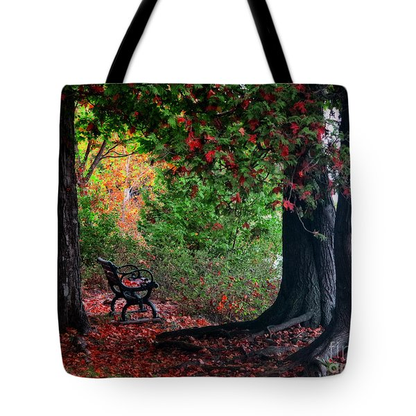 Fall In Henes Park Tote Bag
