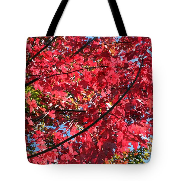 Tote Bag featuring the photograph Fall In Illinois by Debbie Hart