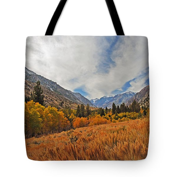 Fall In Lundy Canyon Tote Bag by Lynn Bauer