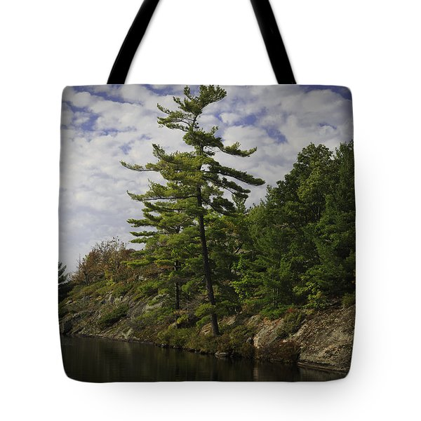 Fall In Northern Ontario Tote Bag