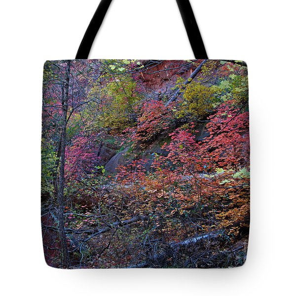 Tote Bag featuring the photograph Fall In Sedona by Ruth Jolly