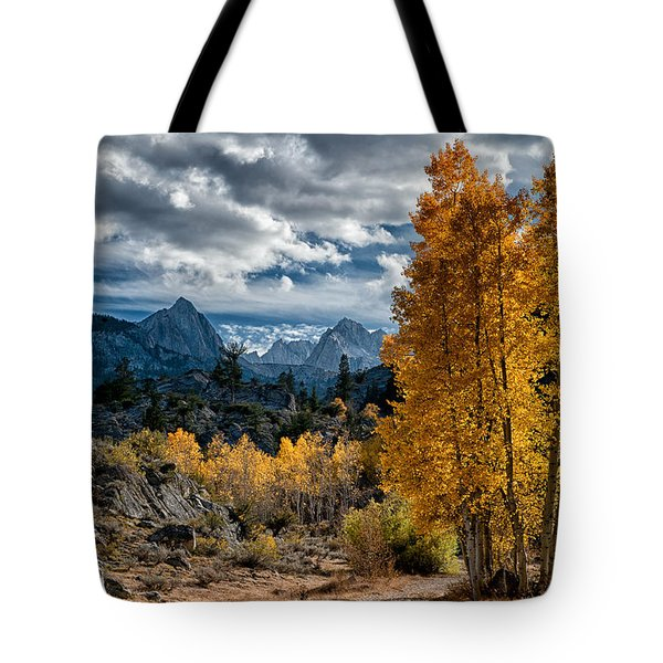 Fall In The Eastern Sierra Tote Bag by Cat Connor