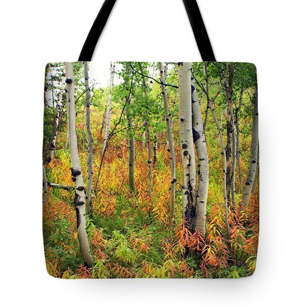 Fall In The Tetons Tote Bag by Marty Koch