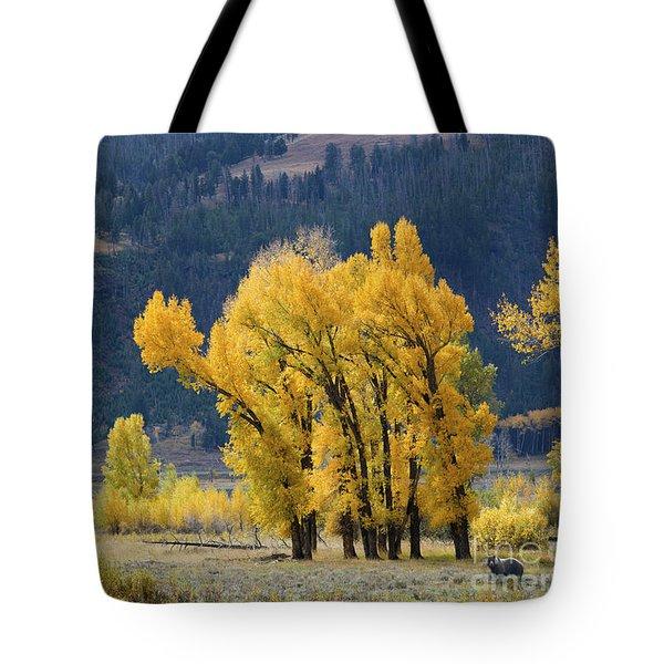Fall In Yellowstone Tote Bag