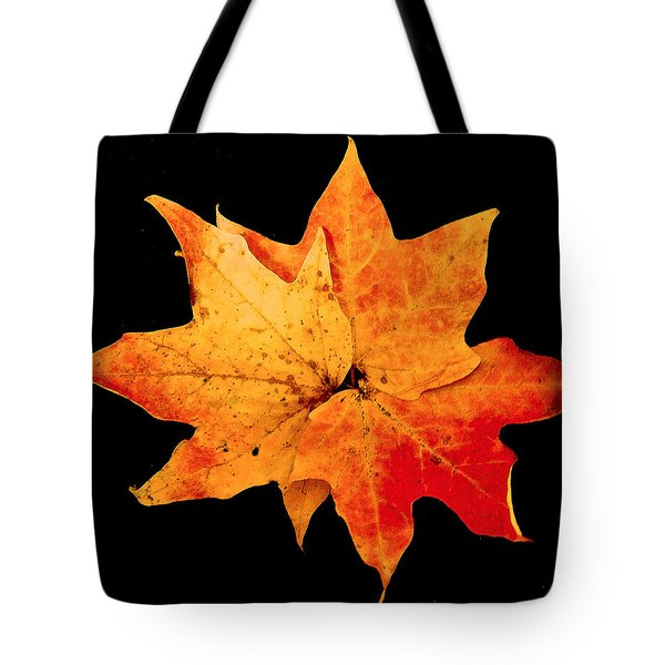 Tote Bag featuring the photograph Fall Leaf Trio by Dee Dee  Whittle