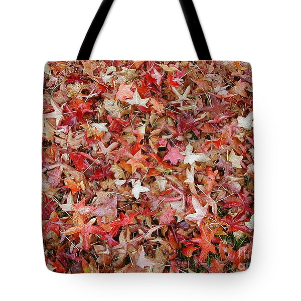 Fall Leaves Tote Bag by Bev Conover