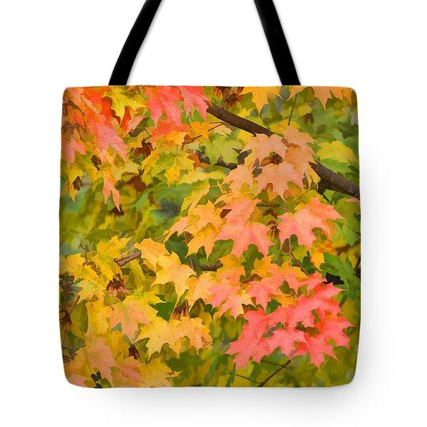 Fall Leaves Maple Tree Tote Bag by Dan Friend