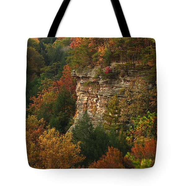 Fall Light Tote Bag