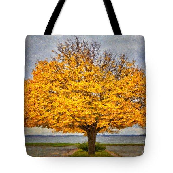 Fall Linden Tote Bag by Verena Matthew