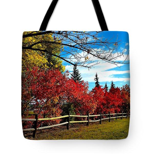 Fall Lineup Tote Bag