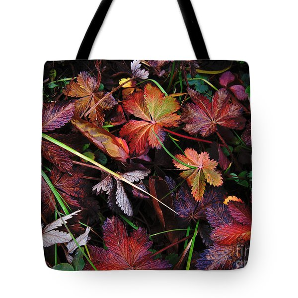 Tote Bag featuring the photograph Fall Mix by Janice Westerberg