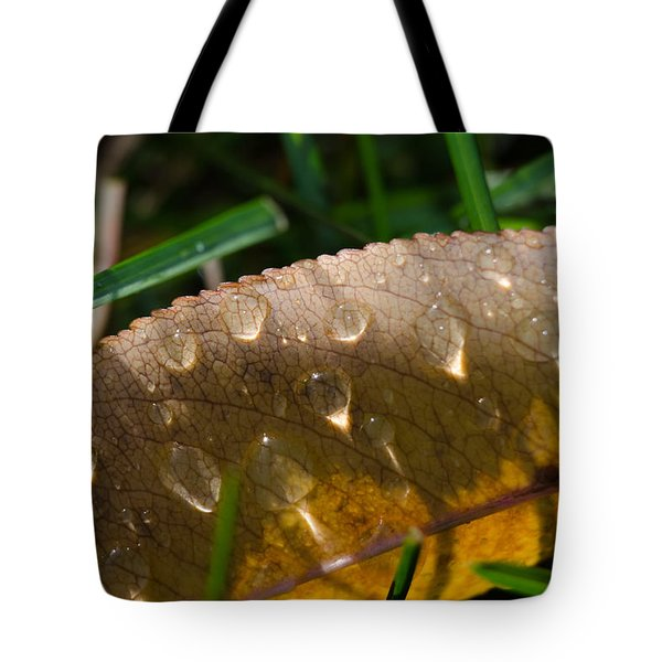 Fall Morning Leaf And Dew Tote Bag