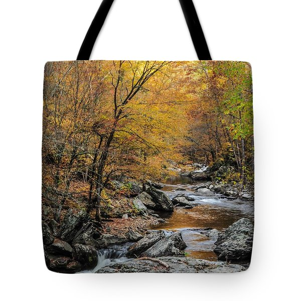 Tote Bag featuring the photograph Fall Mountain Stream by Debbie Green