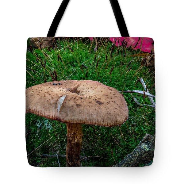 Fall Mushrooms Tote Bag