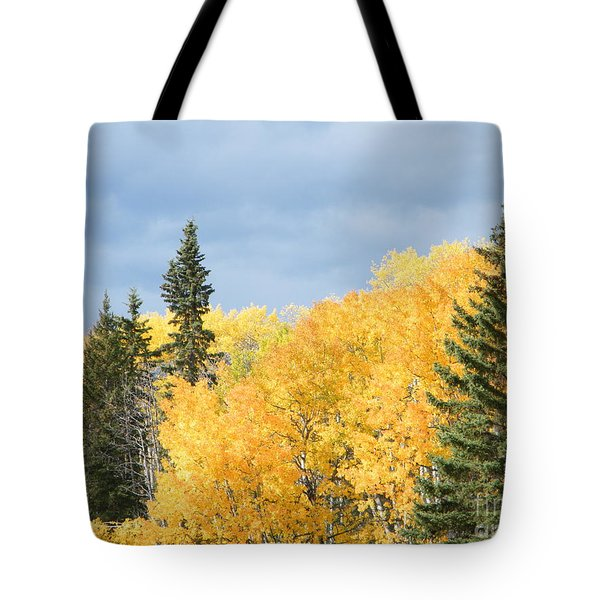 Fall Near Ya Ha Tinda Tote Bag