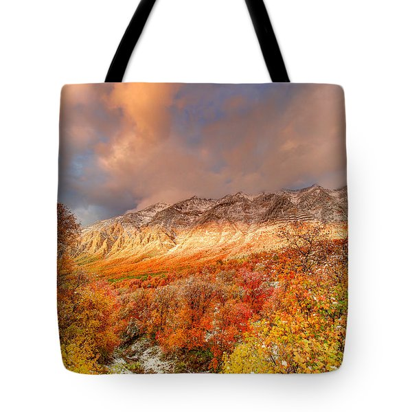 Fall On Display Tote Bag