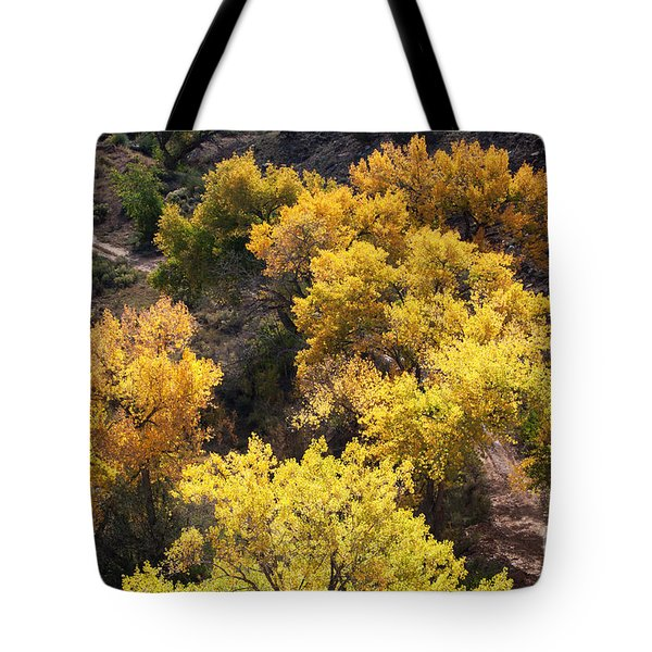 Tote Bag featuring the photograph Fall On The Chama River by Roselynne Broussard