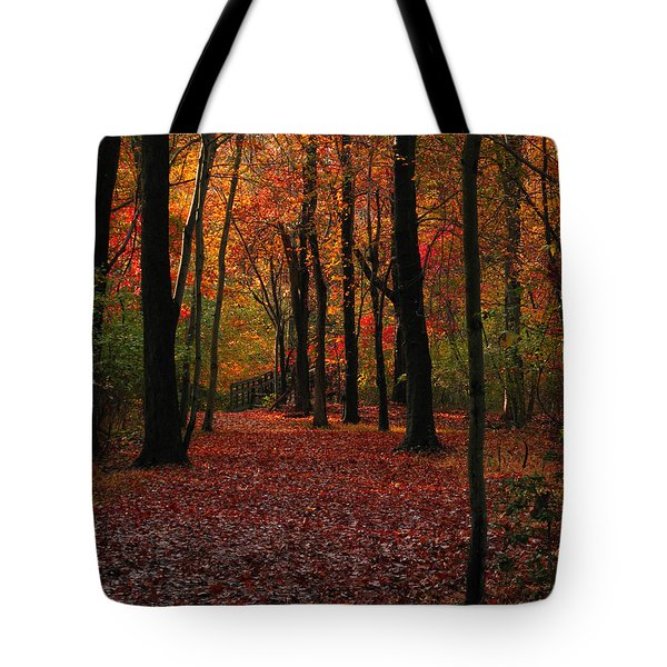 Tote Bag featuring the photograph Fall Path by Raymond Salani III