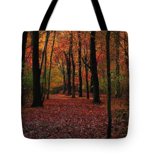 Fall Path Tote Bag by Raymond Salani III