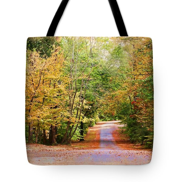Tote Bag featuring the photograph Fall Pathway by Judy Vincent
