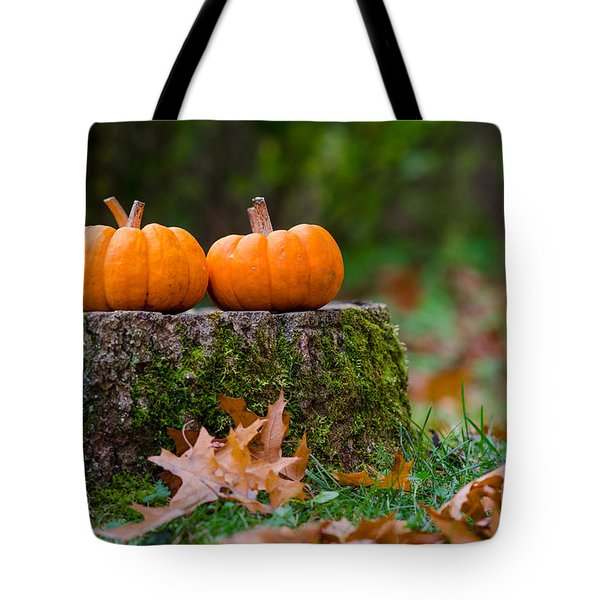 Fall Pumpkins Tote Bag by Mike Ste Marie