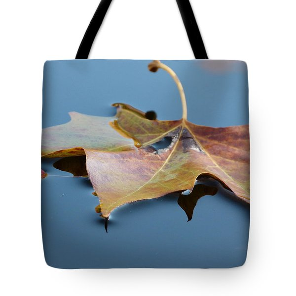 Tote Bag featuring the photograph Fall Reflections by Jane Ford