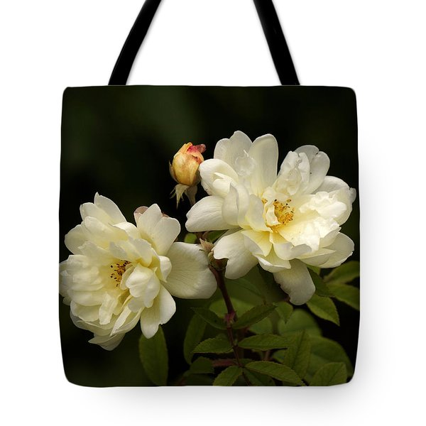 Tote Bag featuring the photograph Fall Roses by Inge Riis McDonald