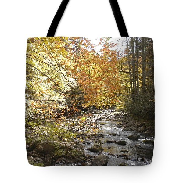 Fall Scene Damascus Va Tote Bag