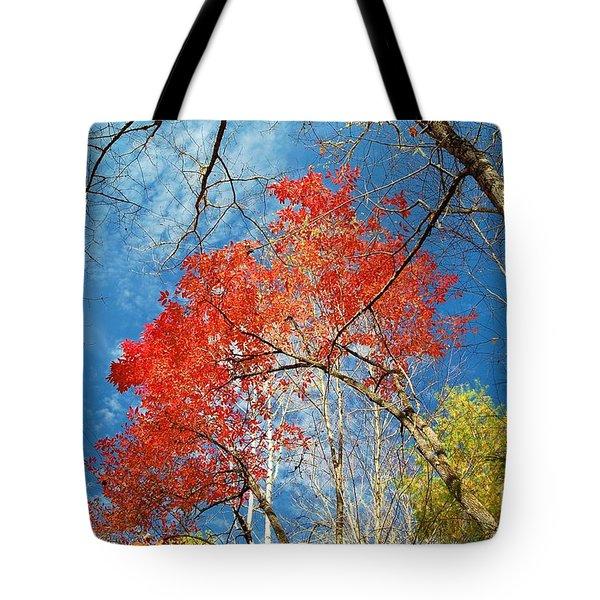 Fall Sky Tote Bag
