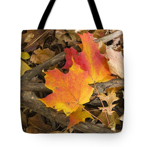 Fall Tote Bag by Steven Ralser