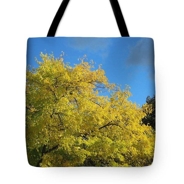 Tote Bag featuring the photograph Fall Tree by Mary Bedy