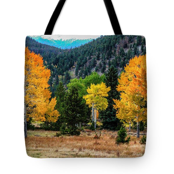 Fall Trees Tote Bag