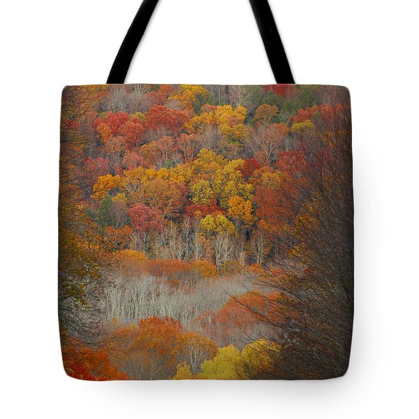 Tote Bag featuring the photograph Fall Tunnel by Raymond Salani III