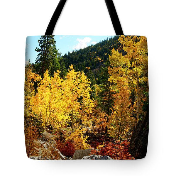 Fall2 Tote Bag