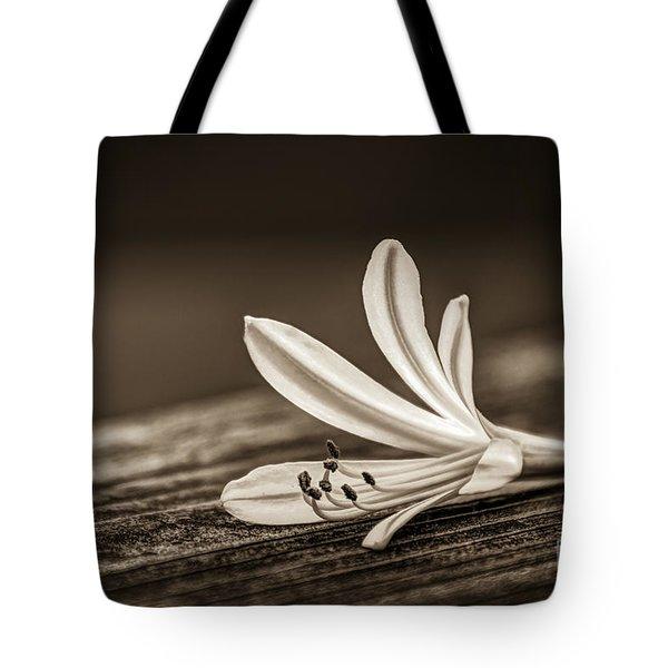 Fallen Beauty- Sepia Tote Bag