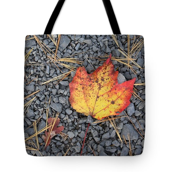 Tote Bag featuring the photograph Fallen Leaf by Dora Sofia Caputo Photographic Art and Design
