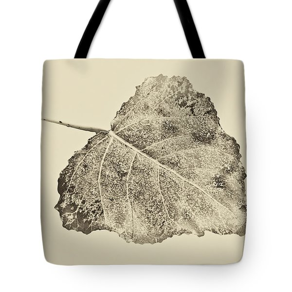 Tote Bag featuring the photograph Fallen Leaf In Antique by Greg Jackson