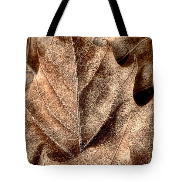 Fallen Leaves I Tote Bag by Tom Mc Nemar