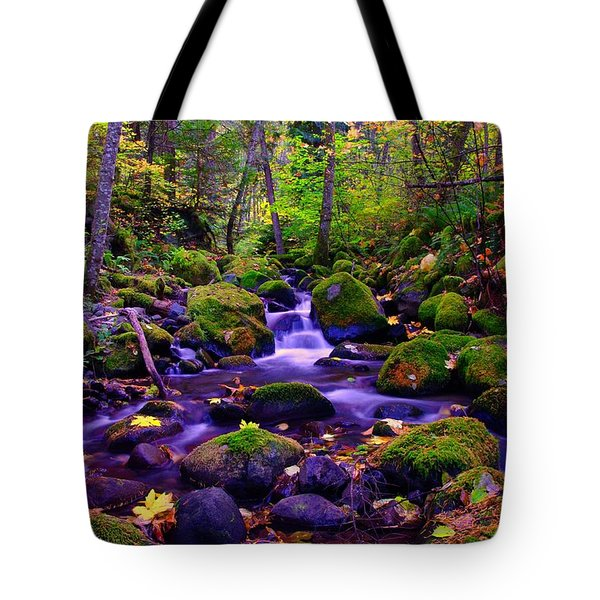 Fallen Leaves On The Rocks Tote Bag