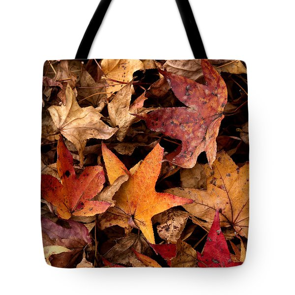 Fallen Leaves Tote Bag by Rebecca Davis