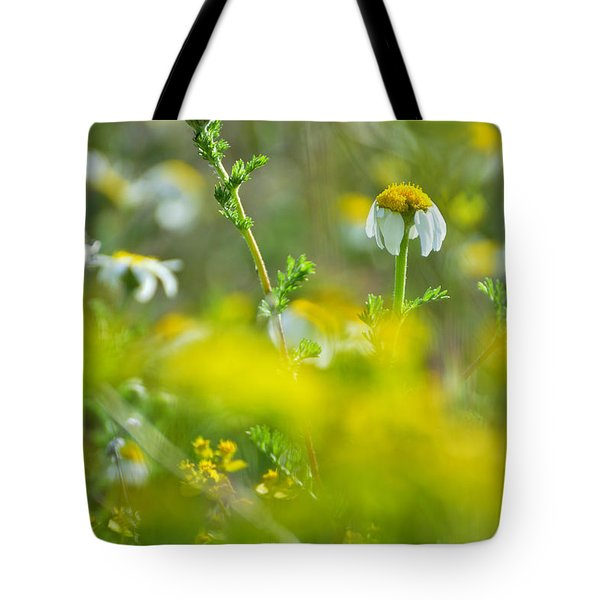 Fallen Petals Tote Bag by Guido Montanes Castillo