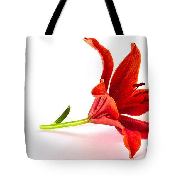 Fallen Tiger Lily Tote Bag