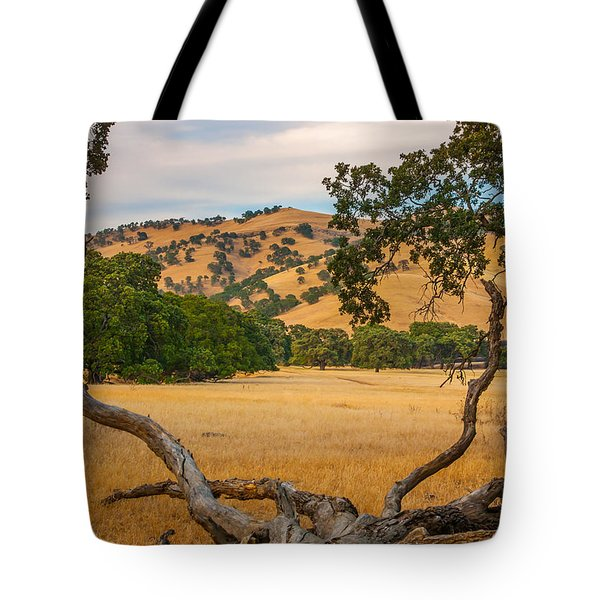 Fallen Tree With A View Tote Bag