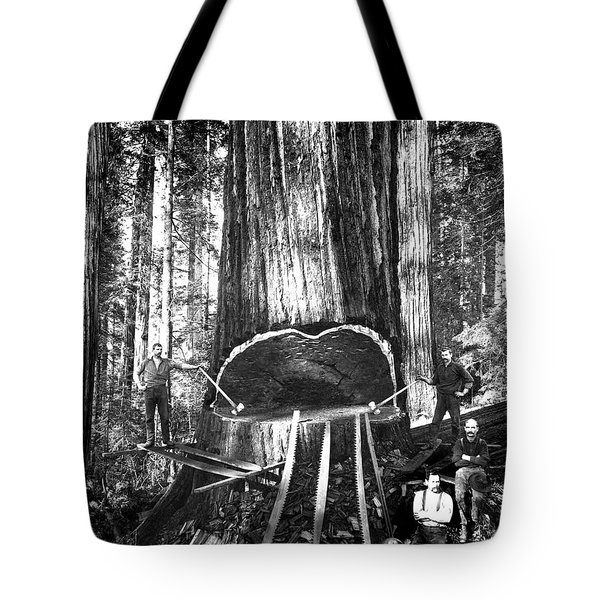 Falling A Giant Sequoia C. 1890 Tote Bag