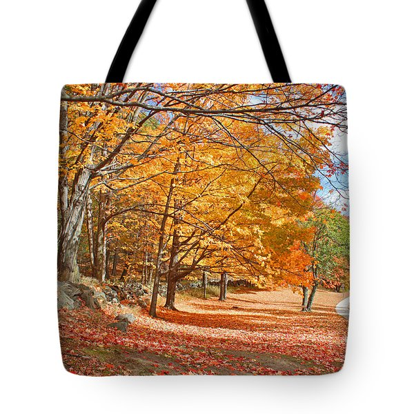 Tote Bag featuring the photograph Falling Leaves On The Road To Bentley by Rita Brown