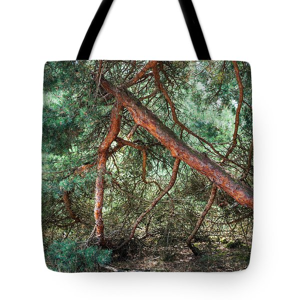 Falling Pine Tree In Veluwe National Park. Netherlands. Tote Bag by Jenny Rainbow