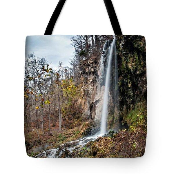 Falling Springs Fall Tote Bag by Debbie Green