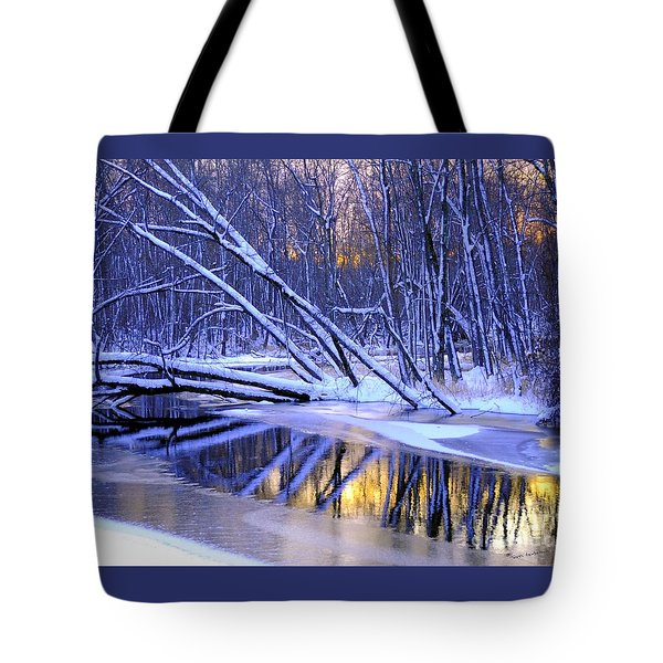 Tote Bag featuring the photograph Falling by Terri Gostola