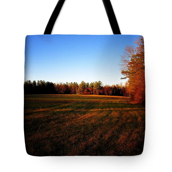 Tote Bag featuring the photograph Fallow Field by Greg Simmons