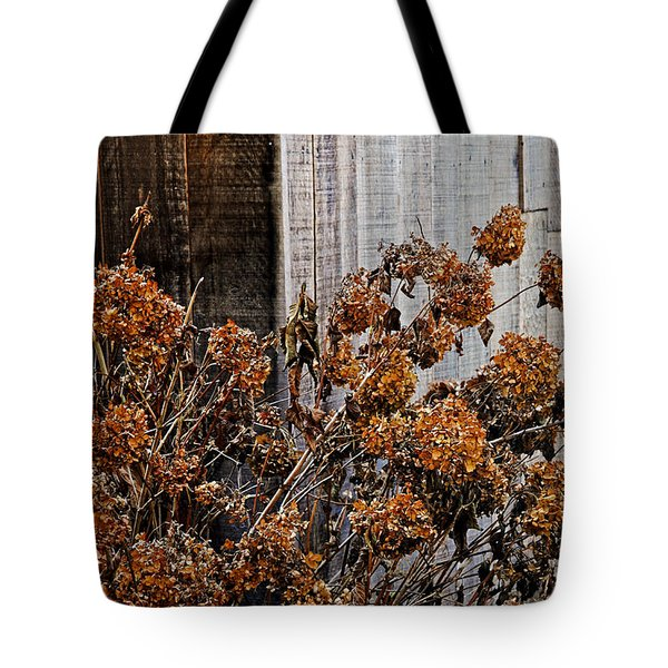 Fall's Fleeting Memories Tote Bag by Cathy Shiflett
